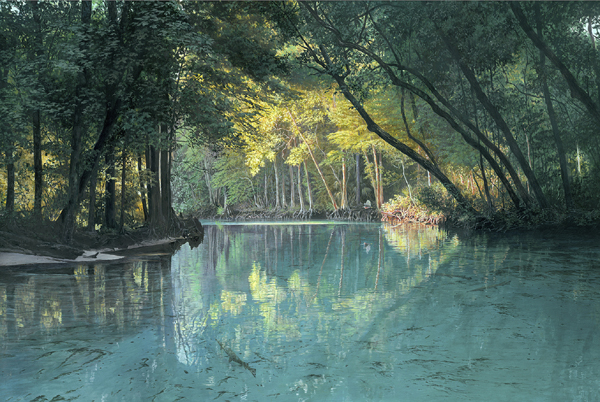 River Ranch Florida >> Charles Rowe Florida Wildlife and Landscape Artist